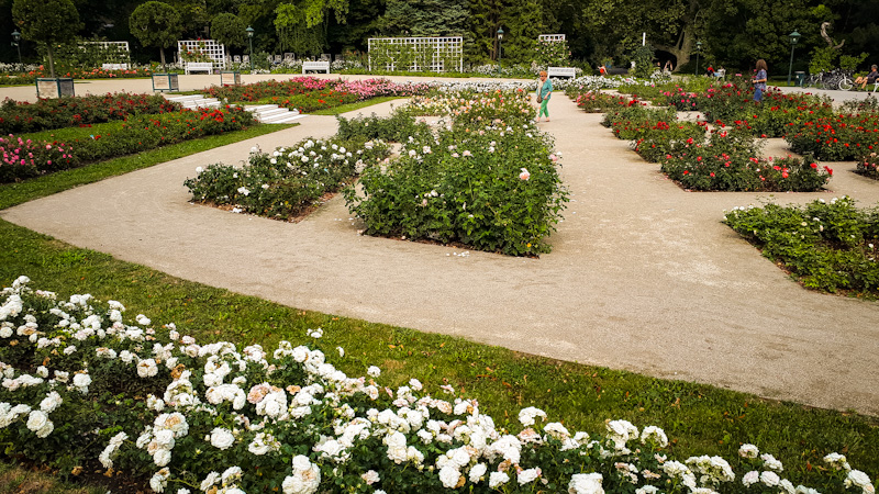 Park różany , Baden