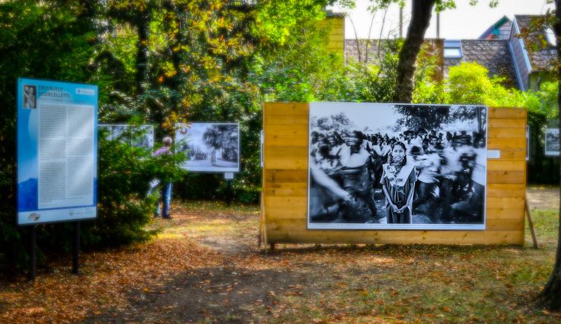 Wystawa fotografii , w parku