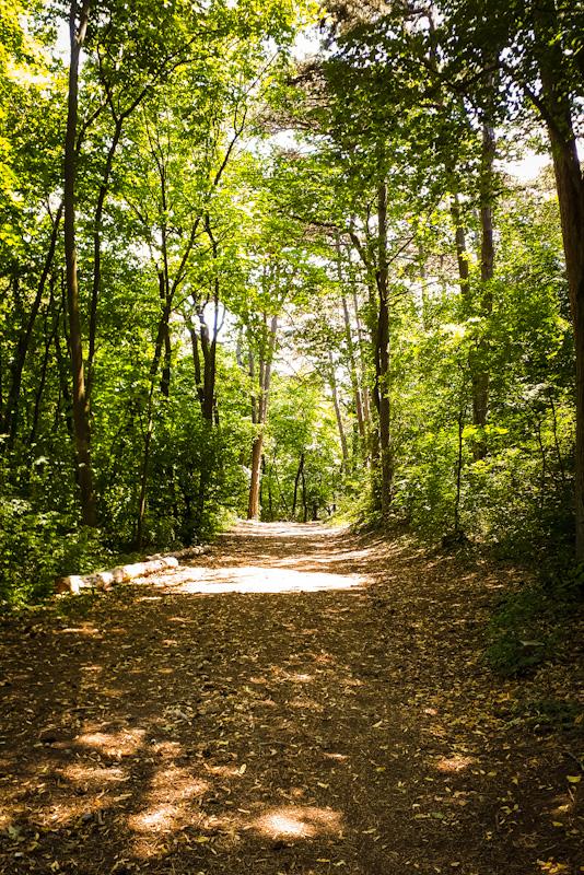 Park Zamku Liechtenstein