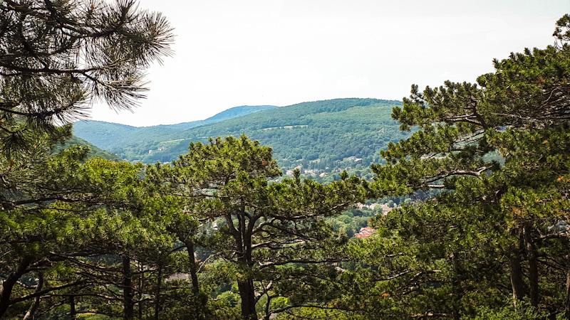 Widok z Parku , Zamek Liechtenstein