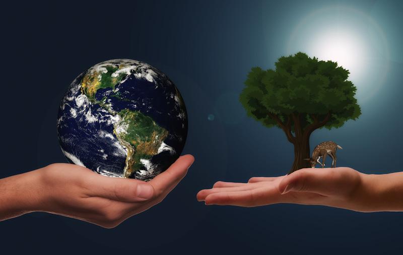 EKO ,ziemia i drzewo .